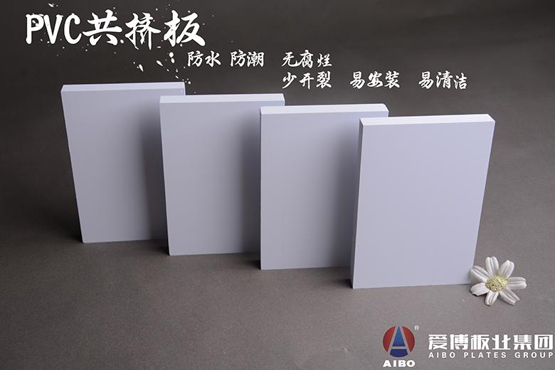 PVC共挤发泡板